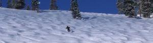 Mogul Skiing  pic